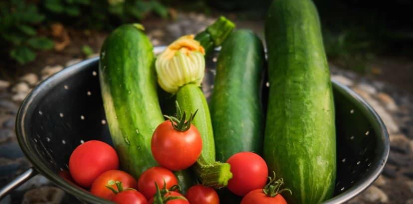 Simple ways to store extra garden harvest