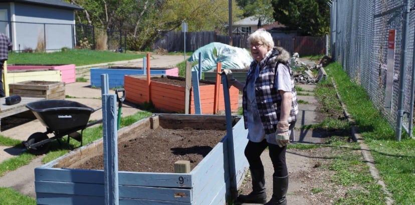 Community gardens seeing increased demand